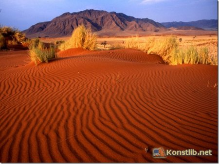 Огляд сайтів «Краса пустелі»